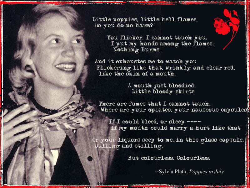 "Speech on Sylvia Plath and ""Poppies in July"" Essay Sample"